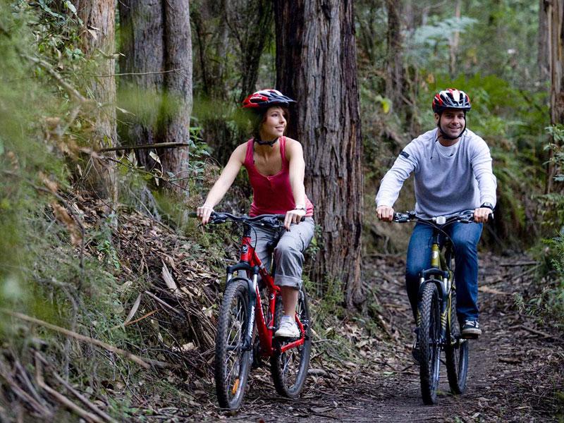 forrest-bike-riding