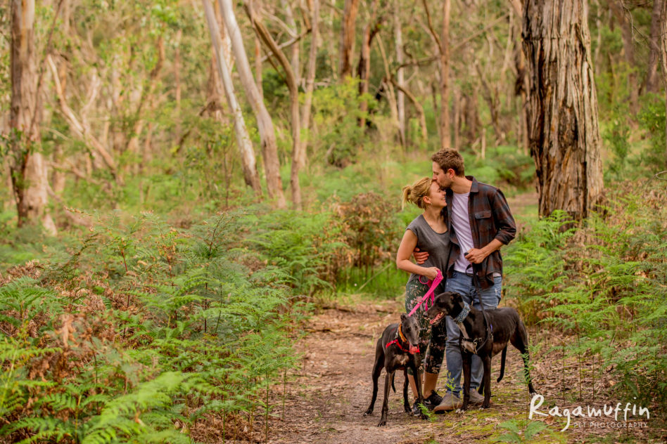 bushwalks from your door
